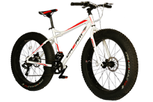 Dream Fatbike